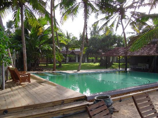 Amor Villa : pool