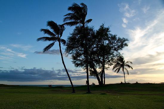 Maui Schooner Resort: The walk to the beach
