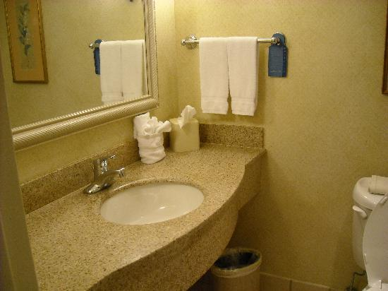 Hilton Garden Inn Houston/The Woodlands: Clean Bathroom