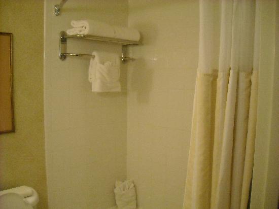 Hilton Garden Inn Houston/The Woodlands : Bathroom