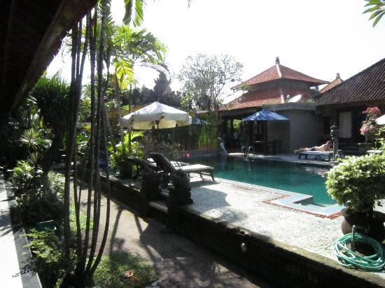Stana Puri Gopa Hotel : Vista piscina dalla stanza con ristorante dietro