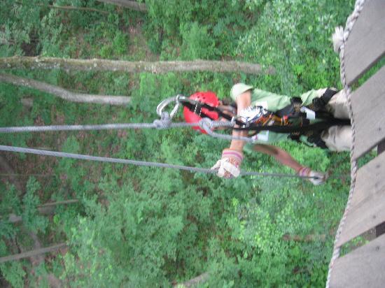 Tree Frog Canopy Tours Zipline: First Rappel