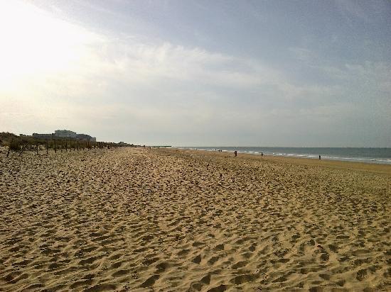 Apartamentos Leo Deluxe : playas de punta umbria