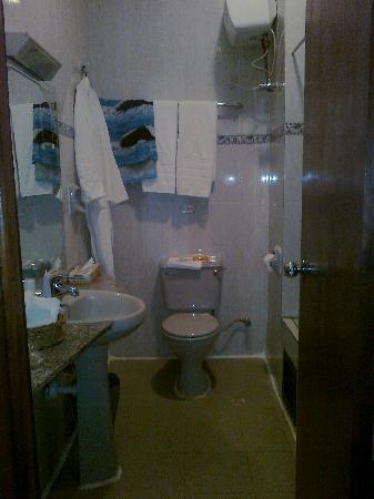 Reiz Continental Hotel: Toilet