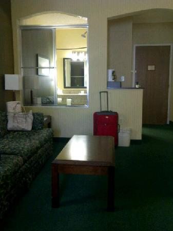 Comfort Suites Buffalo: view of tub which looks into the sitting area