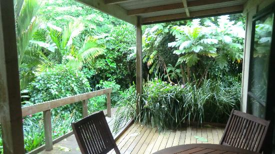 Wharepuke Subtropical Accommodation: La terrasse dans la Pampa