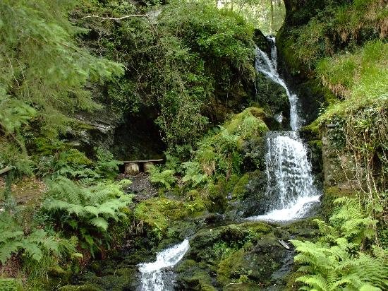 Aberdunant Hall Holiday Park & Hotel: One of the waterfalls and little nook