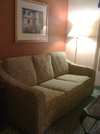 Hampton Inn and Suites Arundel Mills / Baltimore: pull out couch