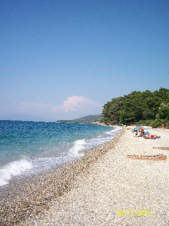 Villa Konak Hotel Kusadasi: Beach at the National Park