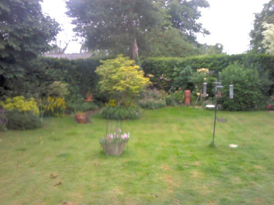 Latchetts Cottage: garden