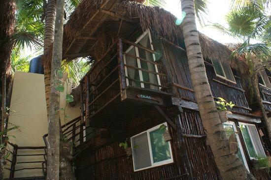 My Tulum Cabanas: cabanas