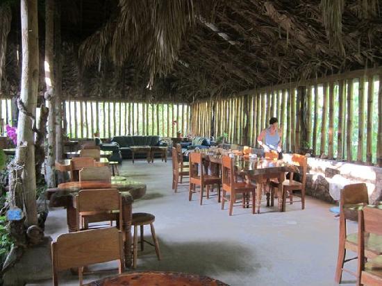 Orchid Garden Eco-Village Belize: Dining area where we enjoyed many vegan meals