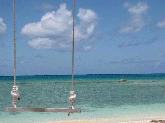 Cape Eleuthera Divers: The swing looking out 4th hole beach