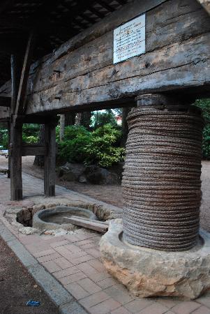 Hostal del Senglar : otro detalle del jardín