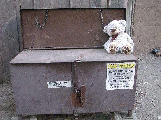 Housekeeping Camp: de bearlocker
