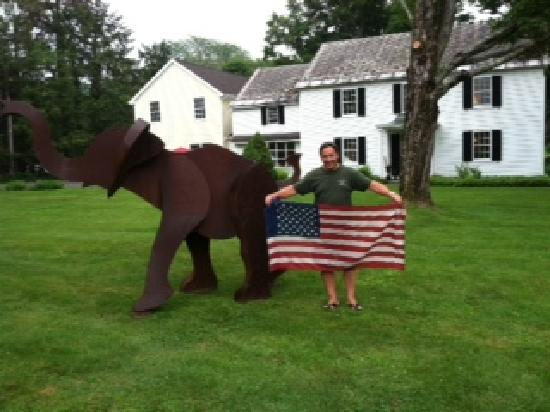 Starbuck Inn Bed and Breakfast: Name the Starbuck Inn Elephant