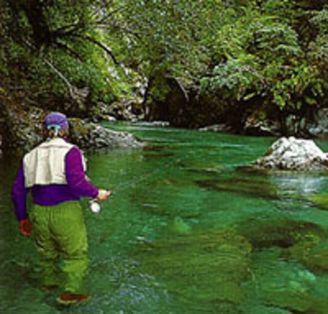Dream Streams Fly Fishing