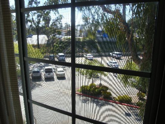 Hilton San Diego/Del Mar: view