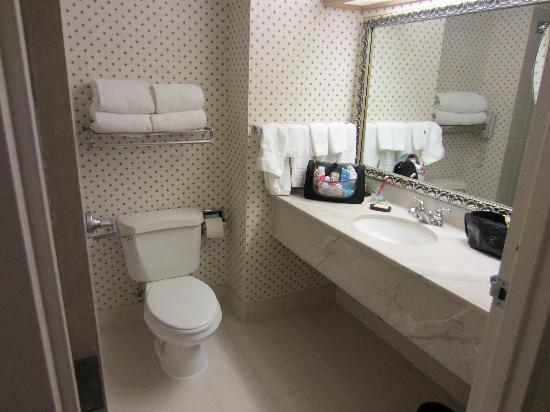 Embassy Suites by Hilton Houston Near the Galleria: Bath room