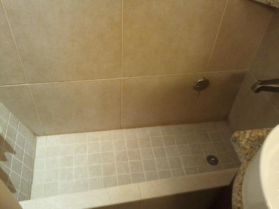 Kellogg Hotel And Conference Center: Tile Tub and Shower