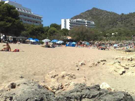 Hotel Canyamel Classic: Spiaggia fine rocce