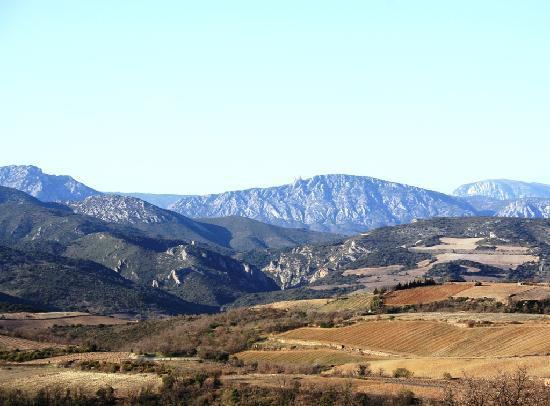 Cassagnes, France: Route des vignes du Domaine Revelh