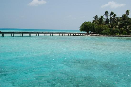 เมดุฟุชิ ไอแลนด์ รีสอร์ท: From the Island to Water Villas