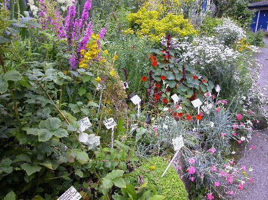 Trefriw Woollen Mills: Weaver's Garden