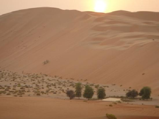 Qasr Al Sarab Desert Resort by Anantara: Towards the sand dune