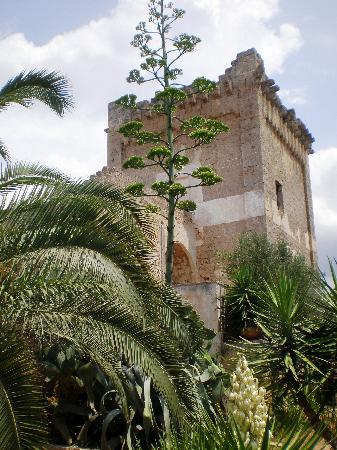 Masseria Fortificata Torre Bellanova : Torrione medievale