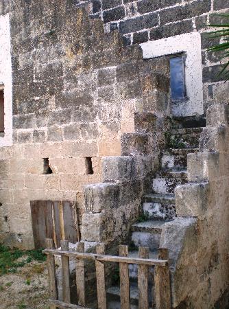 Masseria Fortificata Torre Bellanova : Zona antica della masseria