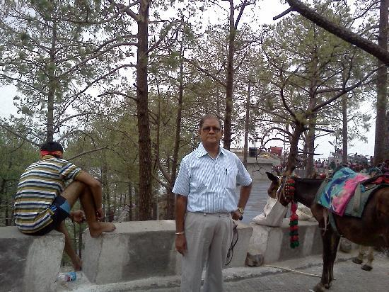 Katra, India: On way to the temple