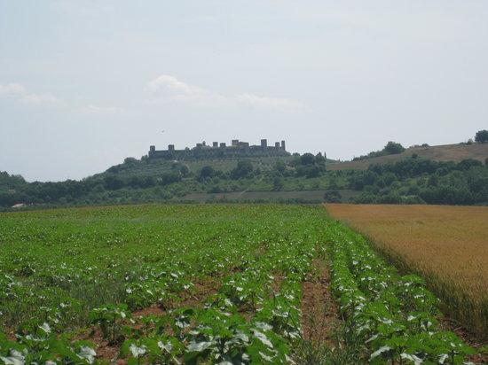 Wine Tour Adventure : Chianti Wine Region