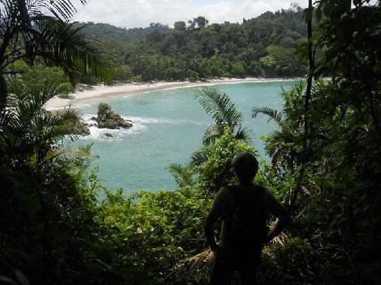 Playa Manuel Antonio : Manuel Antonio Beach