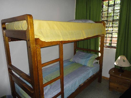 Palm Tree Hostal Medellin: Camarote
