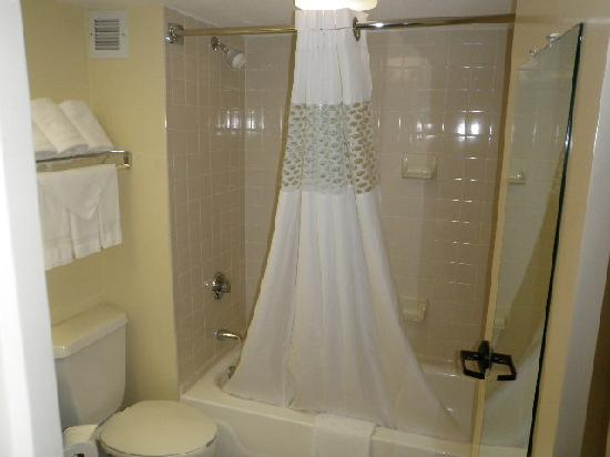 Hampton Inn Dallas-Arlington-DFW-Six Flags: Shower