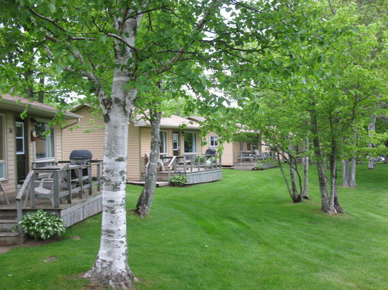 Cavendish Maples Cottages: Many other cottages to choose from.