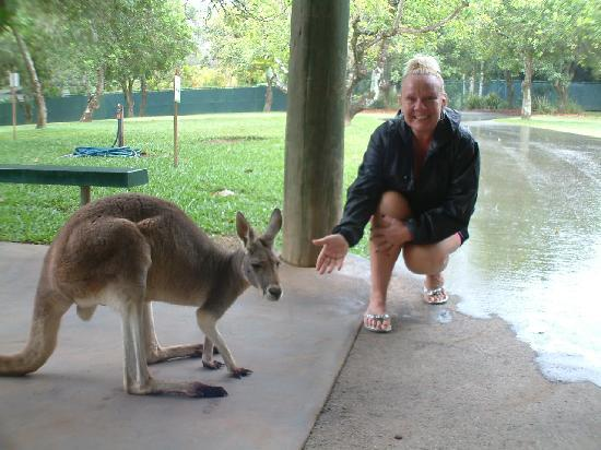 Australia Zoo : getting up close