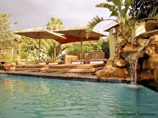Guesthouse Terra Africa : pool area
