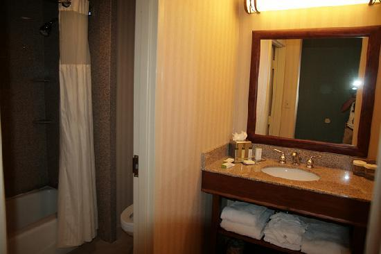 Doubletree Inn at The Colonnade: Hotel Room 1
