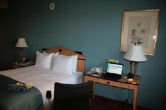 Doubletree Inn at The Colonnade: Hotel Room 2