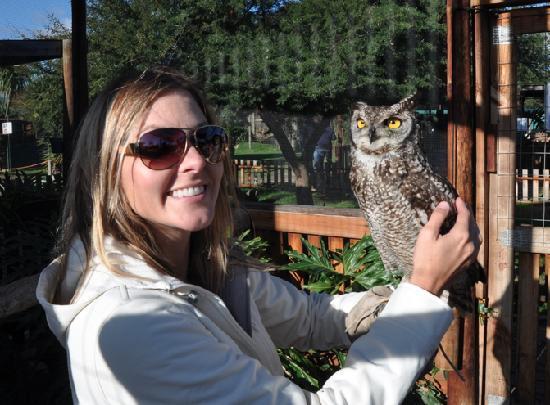 Cheetah Outreach : The birds of prey next door.