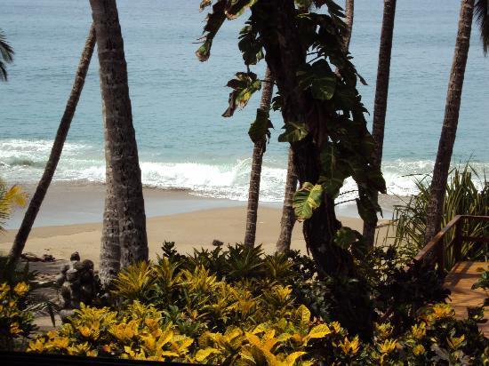 Tango Mar Beachfront Boutique Hotel & Villas: View from our Tiki suite