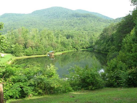 Bed and Breakfast at Swan Lake: View from the porch