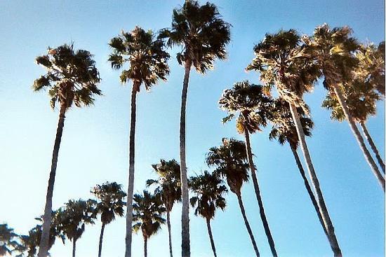 Isla Vista
