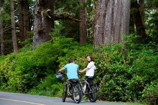 Wickaninnish Inn and The Pointe Restaurant : Beach Cruisers & Ancient Cedars