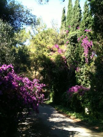 Hotel Baia delle Zagare : Il giardino