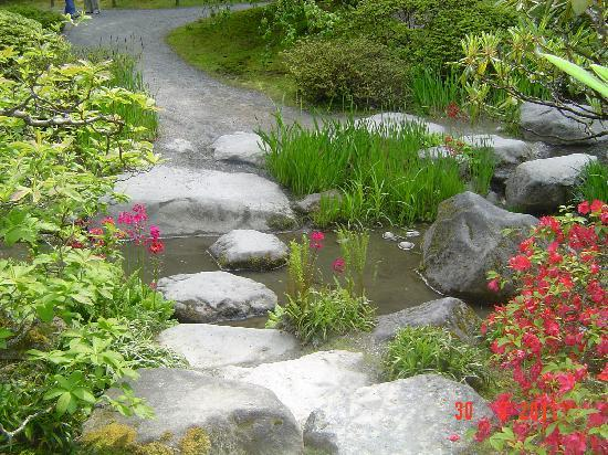 Japanese Garden Stones Seattle japanese garden stepping stones across a stream picture washington park arboretum seattle japanese garden stepping stones across a stream workwithnaturefo