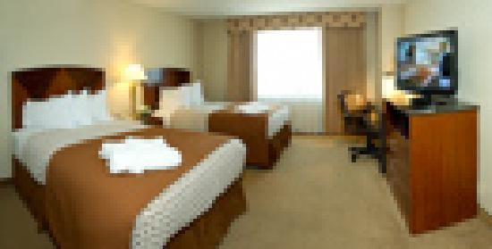 Embassy Suites by Hilton Detroit Southfield: Guest room