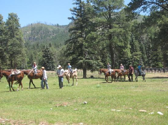 Wilderness Trails Ranch: getting ready for the  Kids rodeo